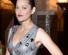 Marion Cotillard in Christian Dior Couture at Dior Dinner