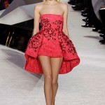 Giambattista-Valli-Spring-2014-Couture-Collection-Slideshow-Tom-Lorenzo-Site (12)