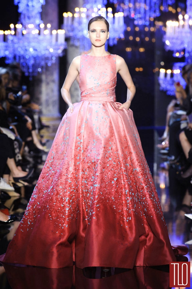 Elie-Saab-Fall-2014-Couture-Collection-Paris-Tom-Lorenzo-Site (10)