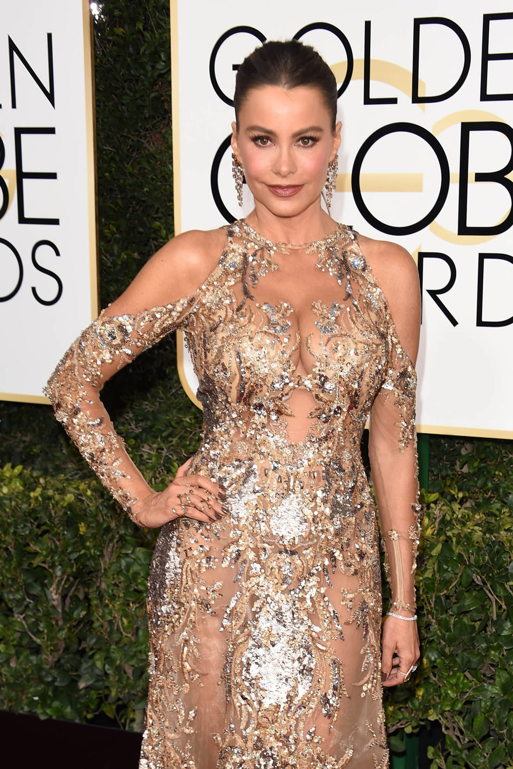 Sofia Vergara Is Too Much At The 2017 Golden Globe Awards Tom Lorenzo